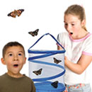 [Live Butterfly Rearing Kits]