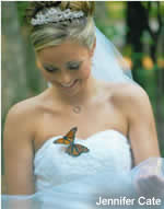 Enjoy a Monarch Butterfly Release at your wedding or event! Lots of SPECIALS and articles! Use Wedding Butterflies for a beautiful, memorable event.