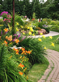 Butterfly garden articles on creating butterfly gardens plans - Gardens central gazebos designs placement ideas ...